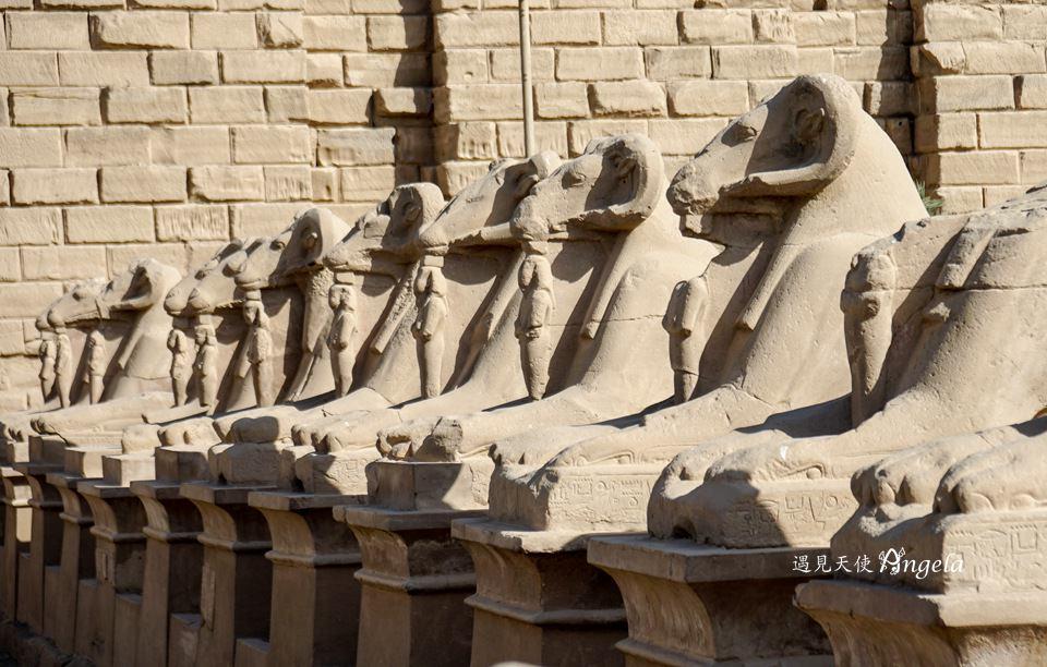 卡納克神殿聖甲蟲