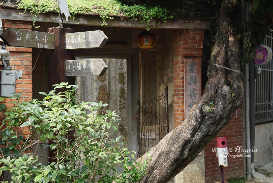 峨眉湖富興老茶廠