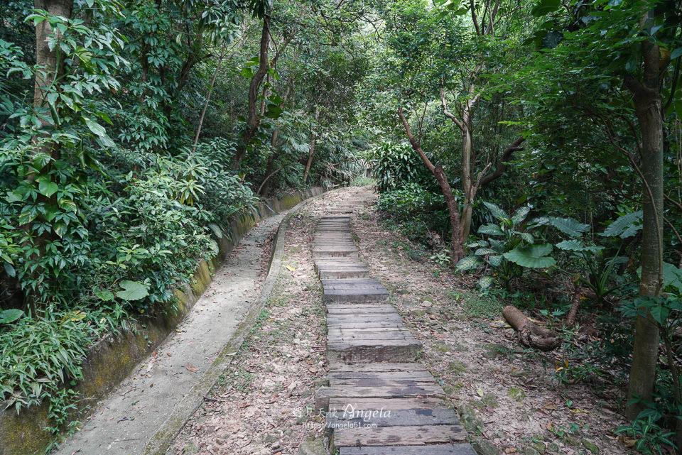 內湖金面山步道