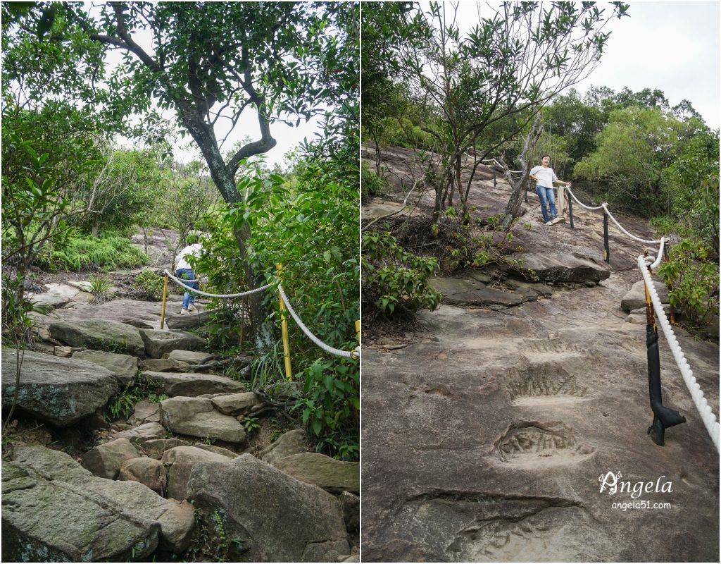 金面山步道大石壁