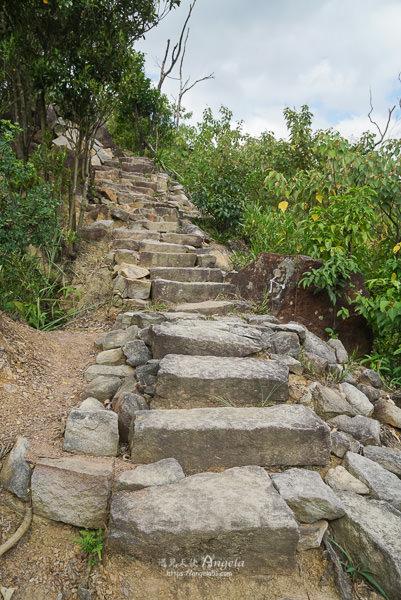 金面山步道