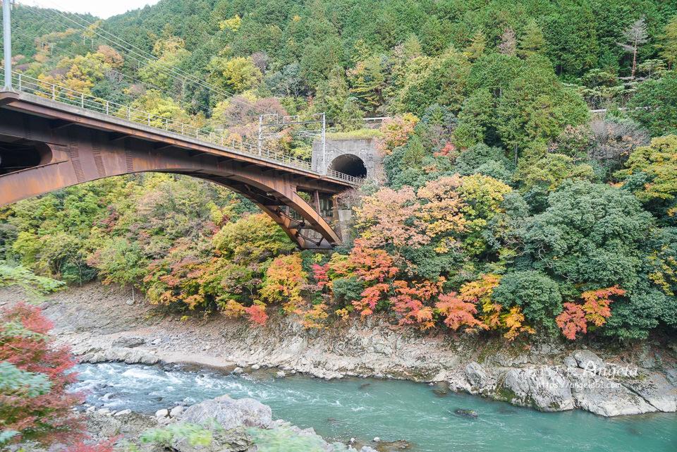 嵯峨觀光鐵道嵐山小火車紅葉