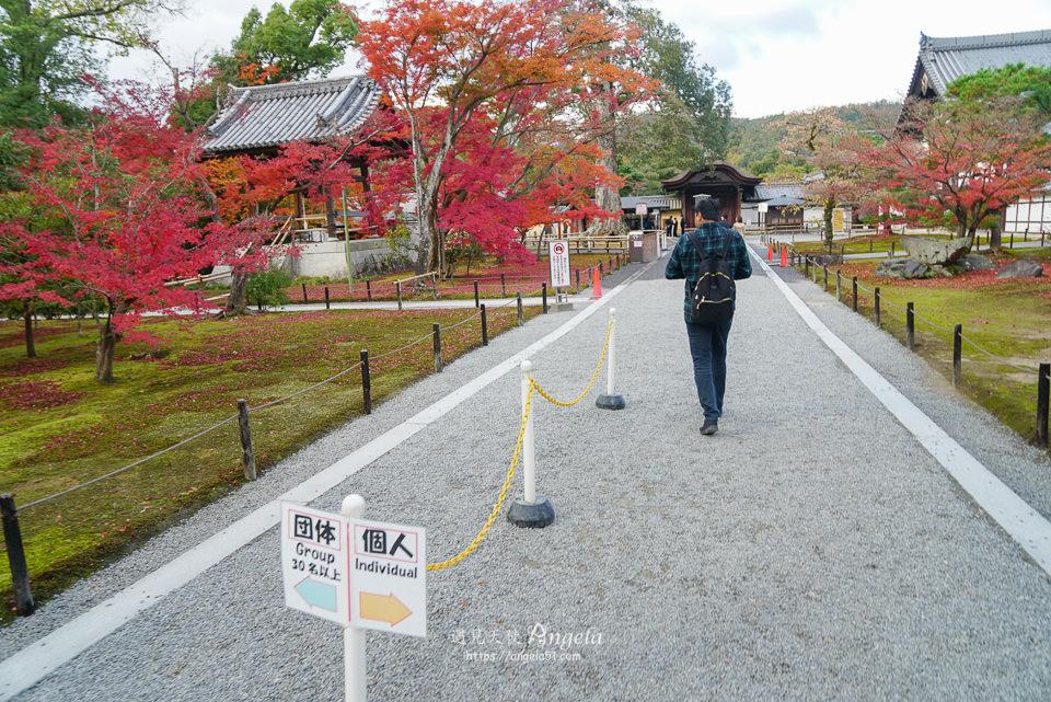 金閣寺紅葉季漂亮嗎