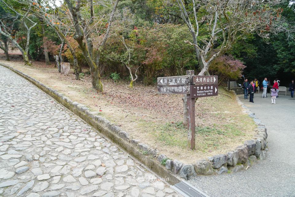 嵐山龜山展望台