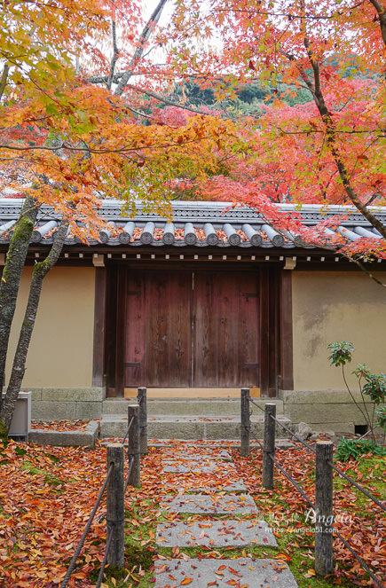 京都紅葉名所永觀堂