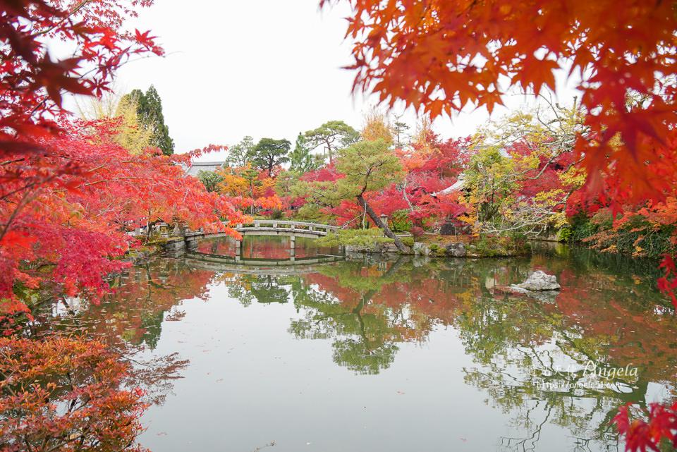 京都紅葉推薦景點永觀堂