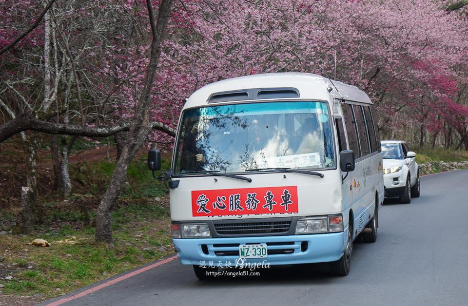 武陵農場接駁車