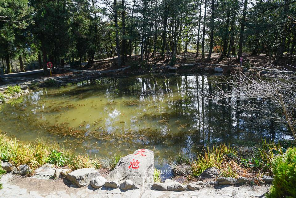 福壽山農場天池
