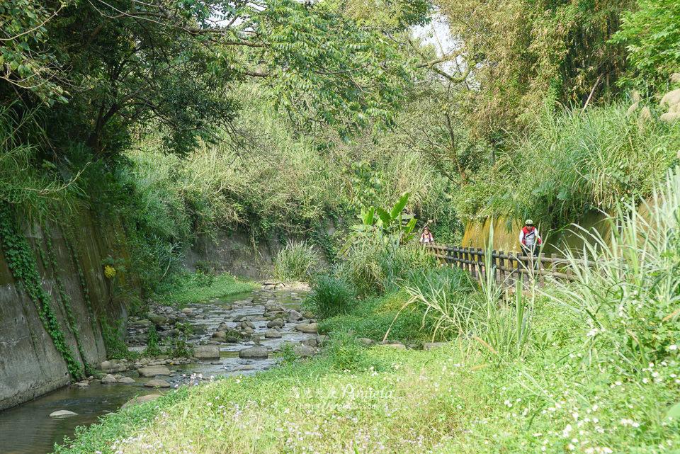清水坑生態步道
