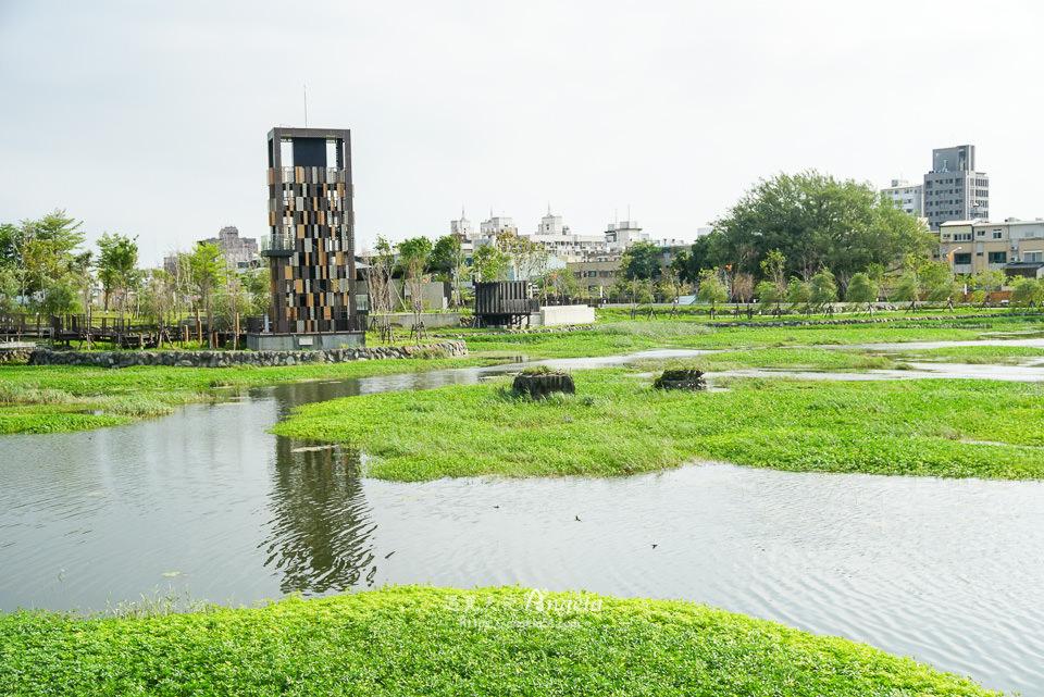 台中湧泉公園台糖生態湖