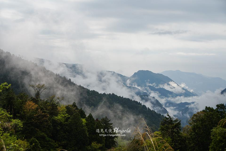 太平山森林遊樂區雲海美景