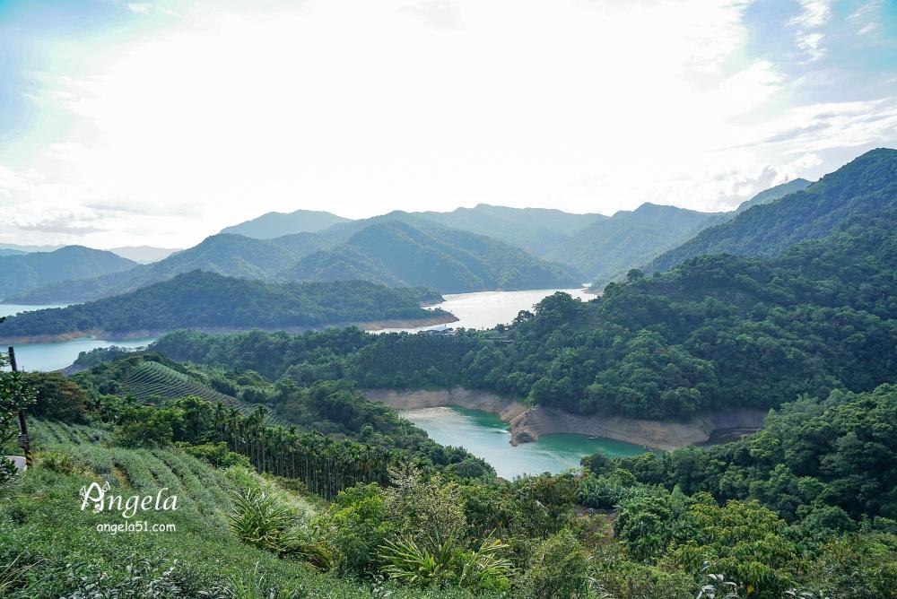 八卦茶園千島湖