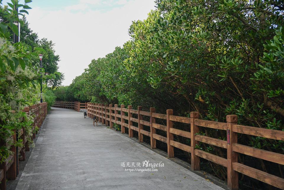 八里景點挖子尾自然保護區