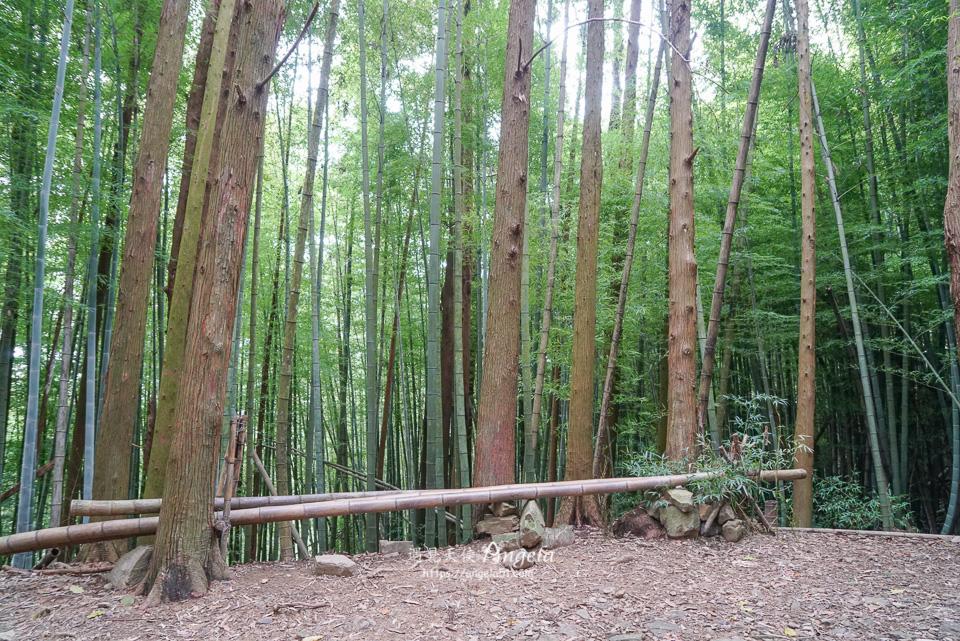 台中1860峰長壽山步道