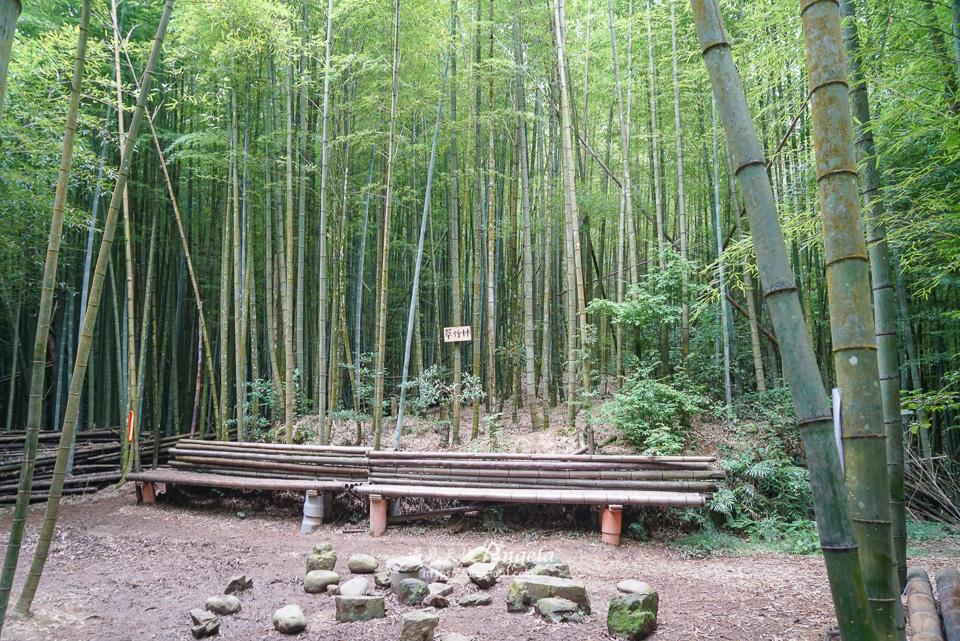 長壽山竹林秘境