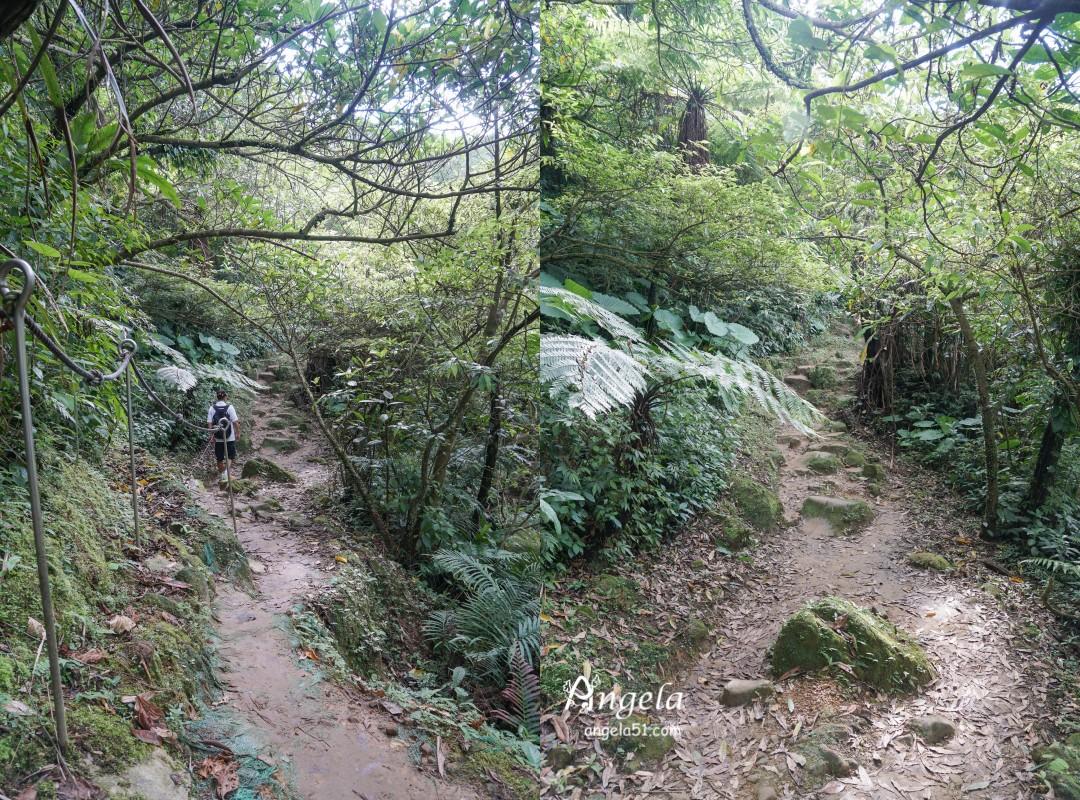 三貂嶺瀑布群步道路況