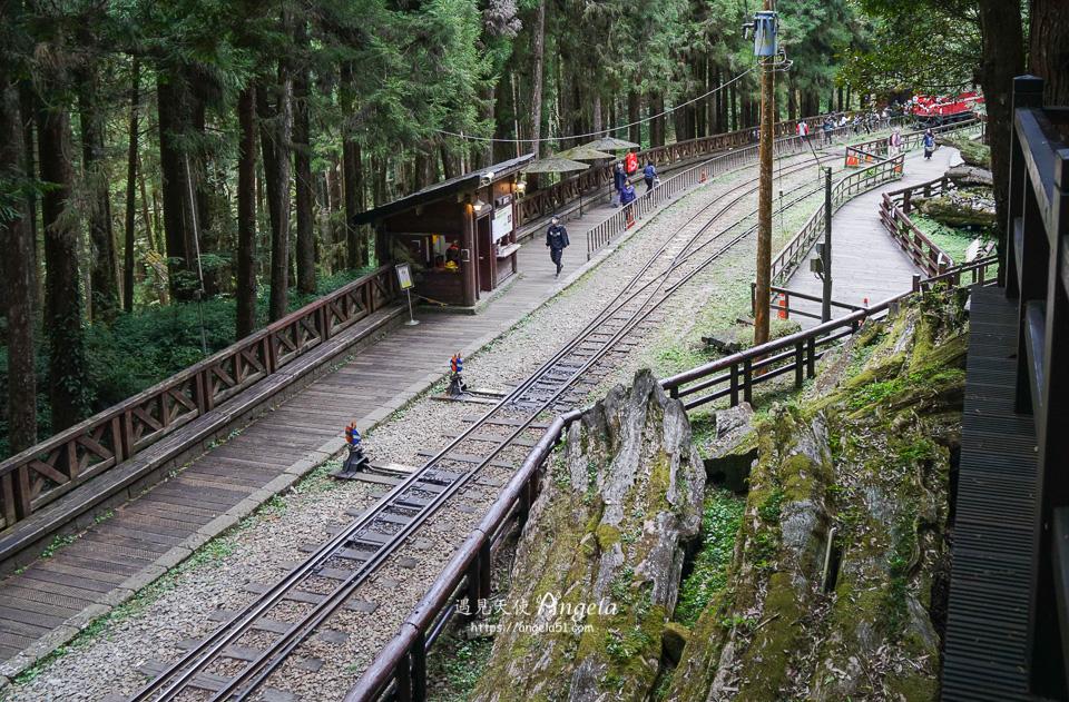 阿里山神木遺址小火車站