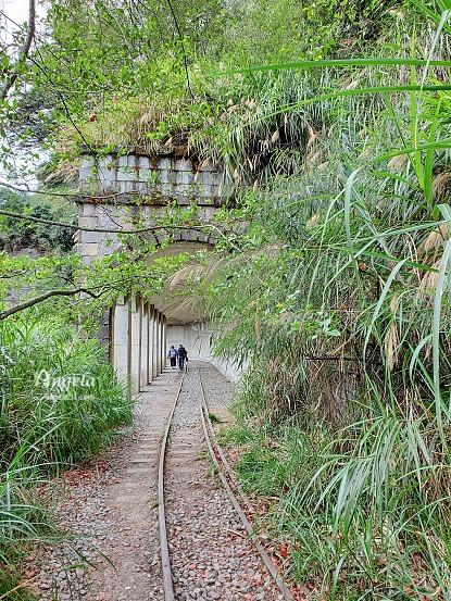 阿里山眠月線明隧道