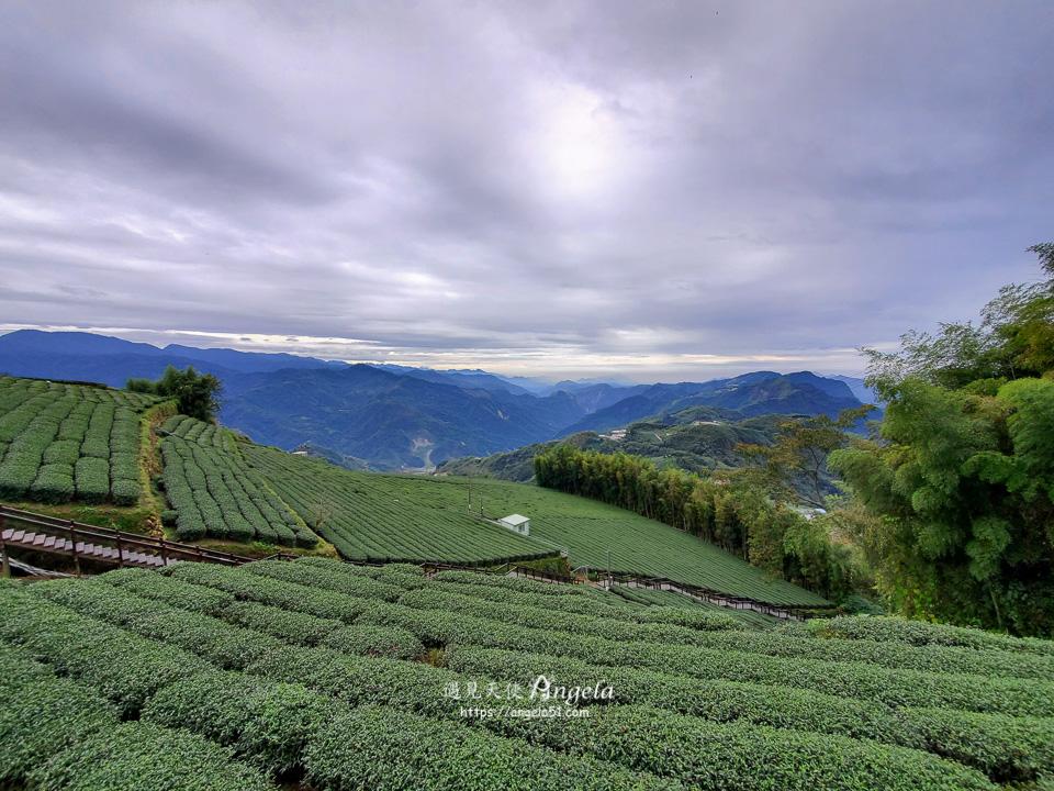 石倬茶園步道景點