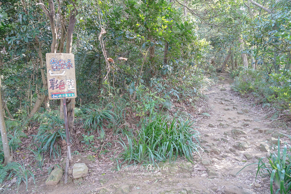 三峽鳶山彩壁步道