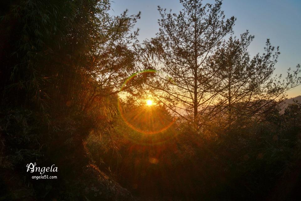 大雪山森林遊樂區夕陽