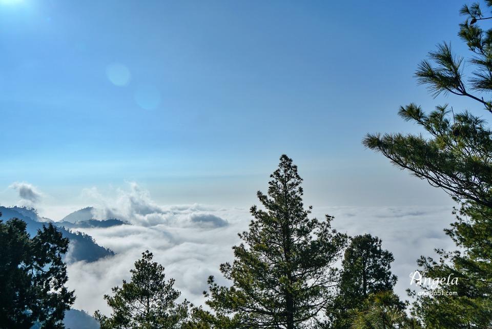 大雪山雲海