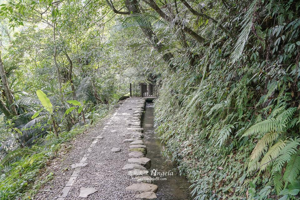 烏來福山古圳步道