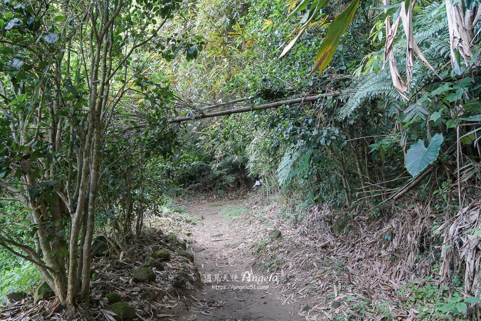 桃園石門山步道土地公廟往觀音像