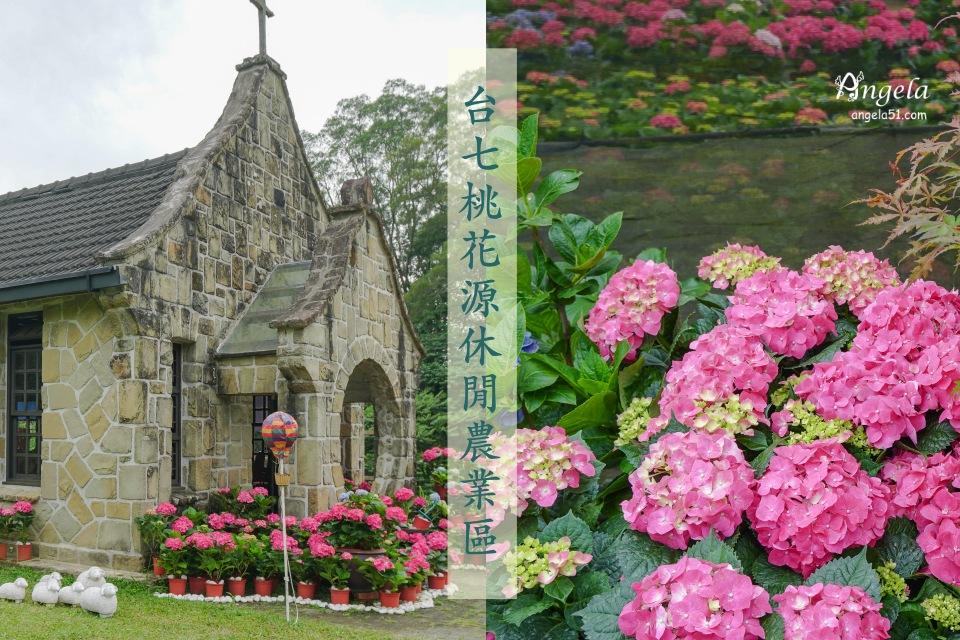 台7桃花源休閒農業區繡球花