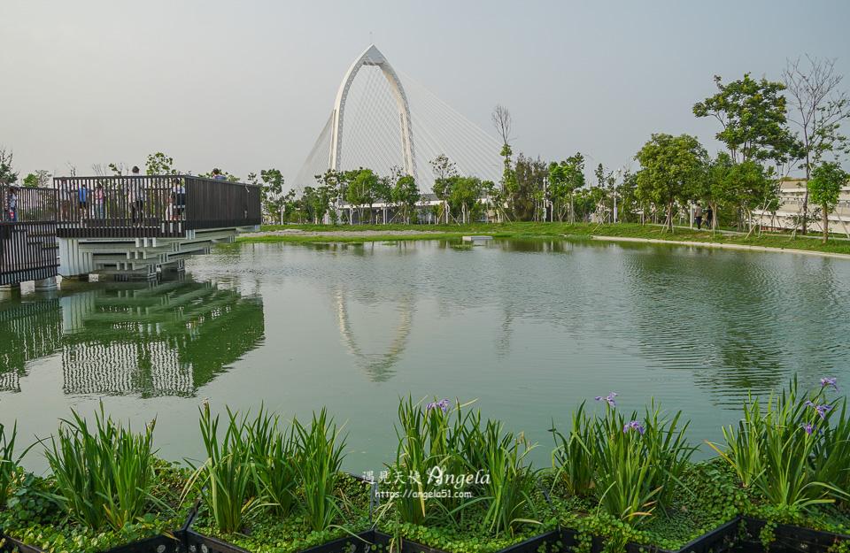 台中水湳中央公園抹茶湖