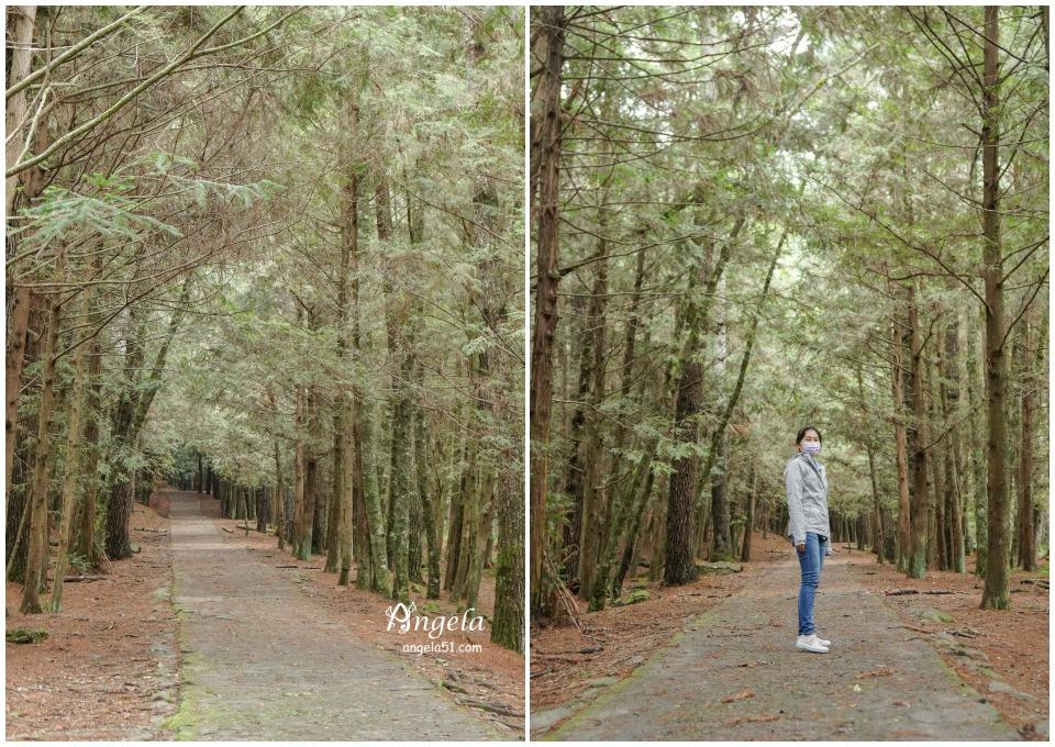 武陵桃山步道