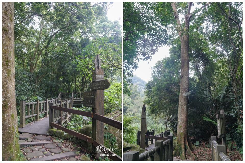 苗栗蓬萊溪護魚步道