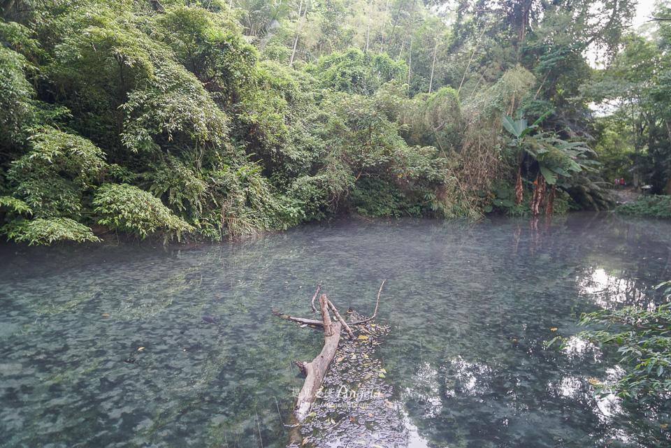 苗栗四十二份湧泉自然生態步道