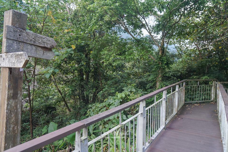 四十二份湧泉自然生態步道護魚步道